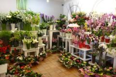 Fleuriste Corinne Delforge Int 48
